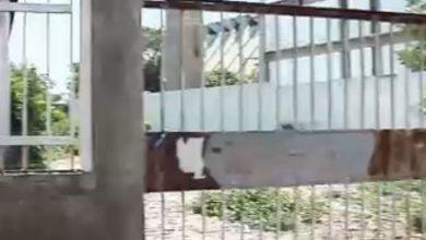 Photo of Prédios públicos abandonados tornam-se bocas de fumo em Teresina